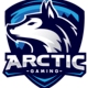 Arctic Gaming - Overwatch